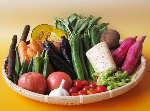 8月有機野菜セット