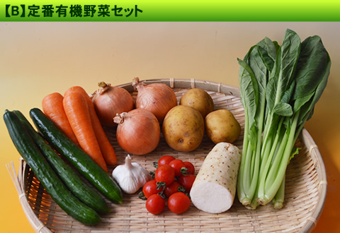 8月の有機野菜セット