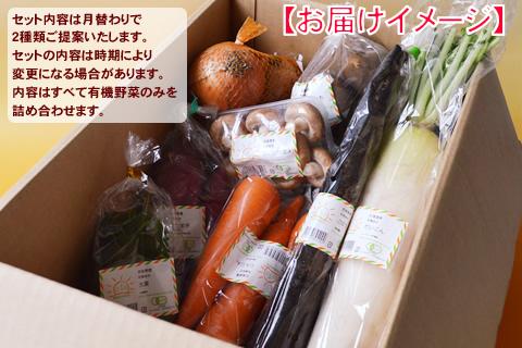 9月の有機野菜セット