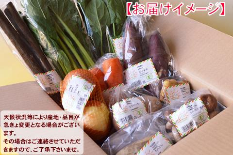 2015新春福袋