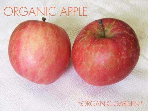 有機りんご・変形