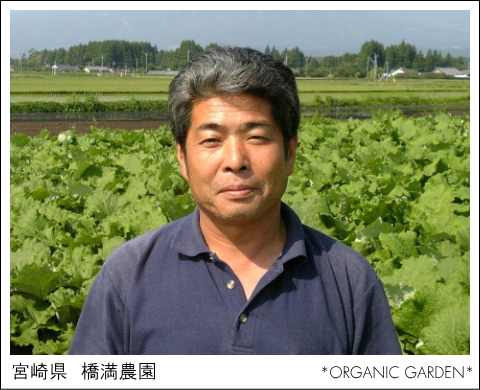 有機野菜生産者:橋満農園