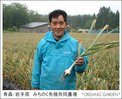 有機野菜生産者:みちのく有機共同農場