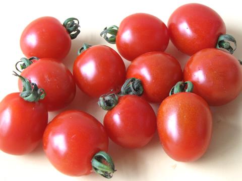 有機 ミニトマト