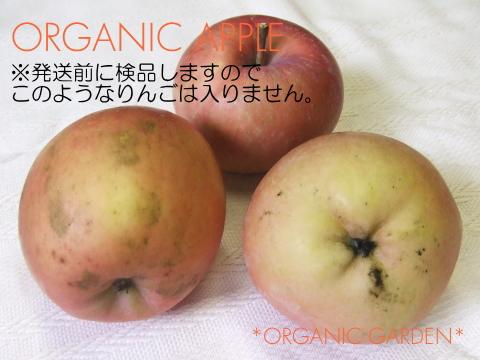 三上さんの有機りんご(すす病)