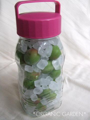 梅ジュースの作り方10